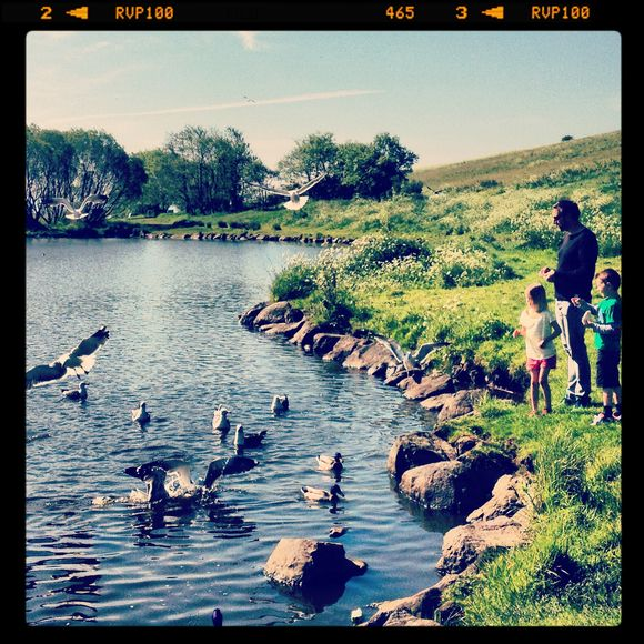 Holyrood Park